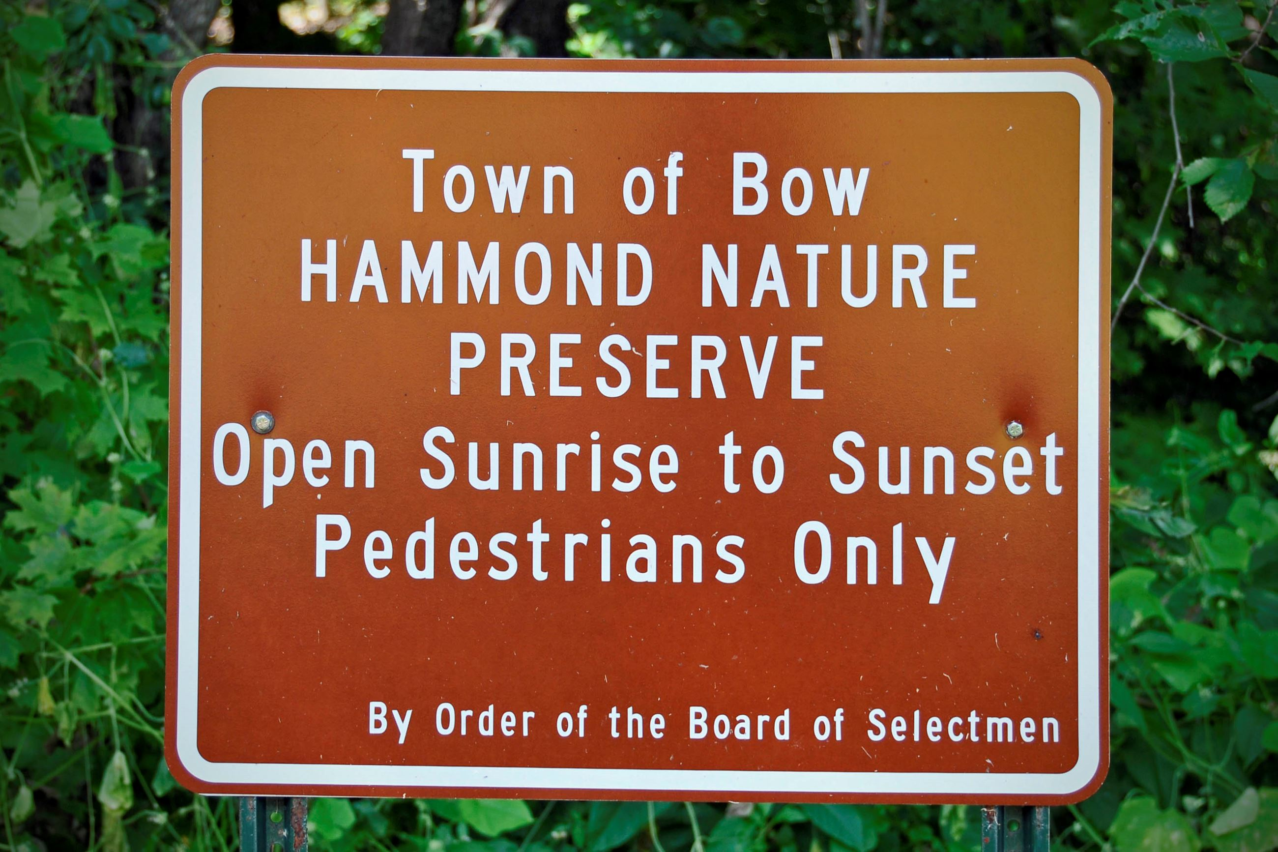 Hammond Nature Preserve (photo by Eric Anderson)