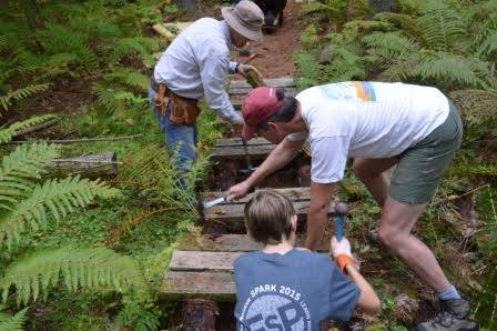 Three people banging hammers, fixing a wooden platform in the forest.